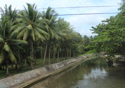 River Control-Alejawan